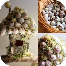 Daily Colours : Fairy Houses - Snail <b>Shell</b> Fairy House Tutorial ...