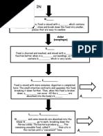 39 Circumstantial Digestive System Process Flow Chart
