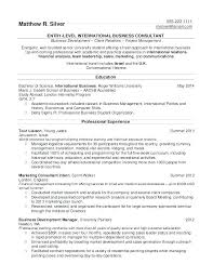 Professional Resume Template 2013