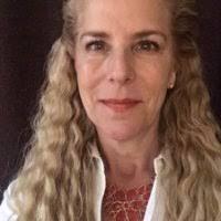 Diane Updyke's email & phone   SiSense's Vice President Sales ...