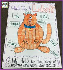 What Is A Label Anchor Chart The Kindergarten Smorgasboard