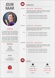 Resume Modern E Moderne Cv Format 209 Mooicv 1 Pinterest Cv Resume Template