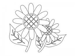 ぬりえ素材二輪のひまわりの花 イラスト無料かわいいテンプレート