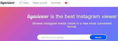 Instagram Web Viewer : Instaliga