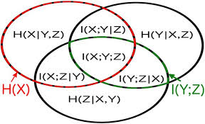 Mutual Information Venn Diagram Network Inference And Maximum Entropy Estimation On Information