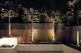 Small Picture Lighting designer Paul Nulty on how to make the most of a garden