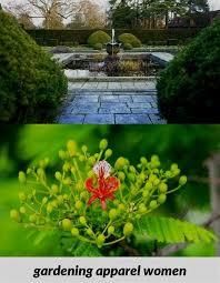 amazing gardens organic horticulture