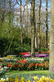 colorful flower patterns.  Colorful Amazing Landscape With Colorful Flower Beds And Patterns In The Park  Keukenhof Holland In Colorful Flower Patterns