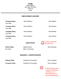 Resume Writing Examples Combination Format