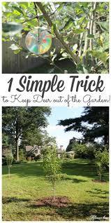 keep deer out of the garden naturally