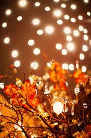 Fall Color String Lights Pin On That Fun Wedding Stuff