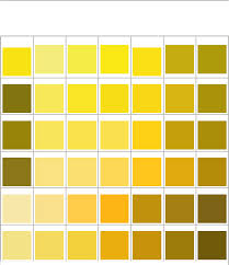 Orange Pantone Color Chart Pms Color Chart