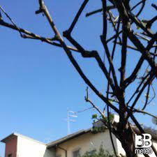 Foto Meteo: Fotosegnalazione Di Paderno Dugnano « 3B Meteo