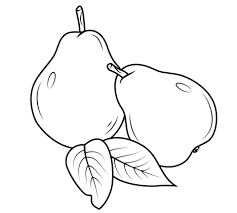 Small Picture Pears coloring pages Free Coloring Pages