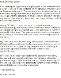 Professional Cover Letter Writing Service Wolf Group