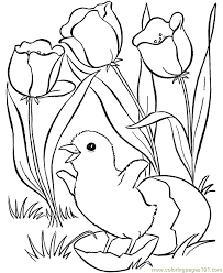 Small Picture Spring Animal Coloring Pages Coloring Home