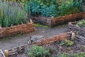raised garden beds 5 tips for