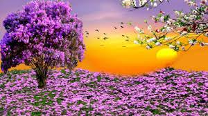 spring nature backgrounds. Free Spring Desktop Wallpapers ~ Toptenpack.com Nature Backgrounds P