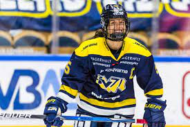 We're still waiting for hv71 opponent in next match. Dam Good A Big Two Win Weekend For Hv71 The Ice Garden