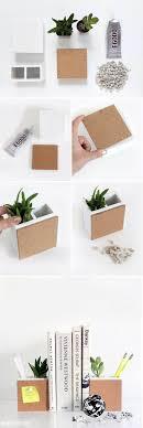 Best DIY Plant Gift Ideas