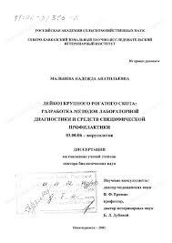Диссертация на тему Лейкоз крупного рогатого скота Разработка  Диссертация и автореферат на тему Лейкоз крупного рогатого скота Разработка методов лабораторной диагностики и