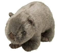 world wildlife fund wombat plush adoptions from world wildlife fund wwf gift center