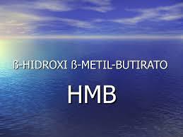 Resultado de imagem para hmb beta hidrox metil butirato