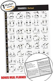 Dumbbell Workout Chart Dumbbell Workout Exercise Poster Home Gym Fitness Workouts New Year Goals Build Core Muscle Lose Fat Fitness Strength Training Poster Workout