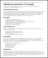 Resume Hair Stylist Hair Stylist Resume Salon Resume Templates Hair Stylist Resume