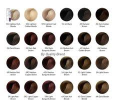 Ion Brilliance Hair Color Chart 76 Best Ion Hair Color Images Hair Hair Color Dyed Hair