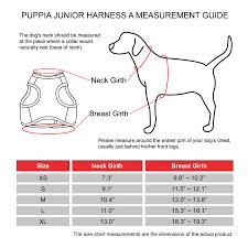 119422 Harness Junior B Jacket Pink Xs