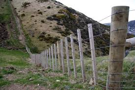 wire farm fence. North Island Wire Fence Farm