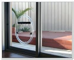 dog door sliding glass doggie for pet installation insert home depot