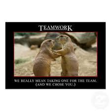 Teamwork Quotes Funny Extraordinary Teamwork Quotes Pictures And Teamwork Quotes Images With Message 48