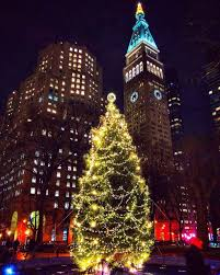 Cathedral Square Park Christmas Lights Madison Square Park Christmas Tree By Mickmicknyc New