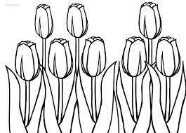 Small Picture Printable Tulip Coloring Pages For Kids 28460 Bestofcoloringcom