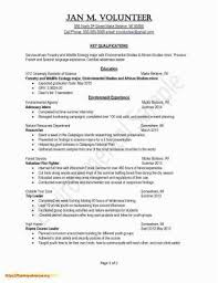 Teacher Cover Letter And Resume Unique Resume Cover Letter Examples For Teachers Example Resume For
