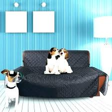 s pet cover for leather couch