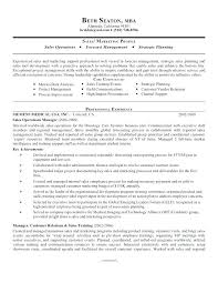 Resume Core Competencies Examples Core Competencies Resume 100 Key Skill For Skills Sales Manager Co 44