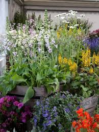 Small Picture Create a Container Garden Design HGTV