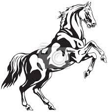 Fototapeta Kůň Choval černobílé Zvířecí Kresby Pro Tetování Znamení Nebo