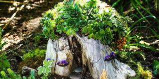 Cool magical best diy fairy garden ideas Plants Diy Fairy Garden Ideas Country Living Magazine 19 Diy Fairy Garden Ideas How To Make Miniature Fairy Garden