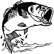 bass fish coloring pages. Fine Coloring Fish Color Pages Fishing Bass Coloring Best Place To  Tropical Sheet For E