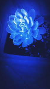 Cute Dark Blue Wallpapers - Top Free ...