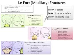 Le Fort Fracture Back To Basics Le Fort Fractures Em Daily