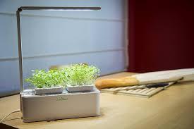 odyseed eden smart herb garden in your kitchen
