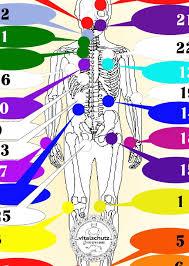 Jin Shin Do Points Chart 26 Jin Shin Jyutsu Sel Color Keys Pls See Shipping Info