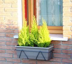 Portavasi per finestre 60 cm antracite massima adattabilità ai