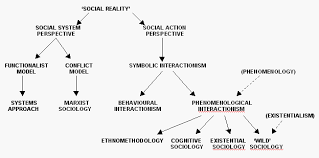 sociological aspects of information science sociological theory