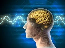 industrial psychology industrial organizational psychology